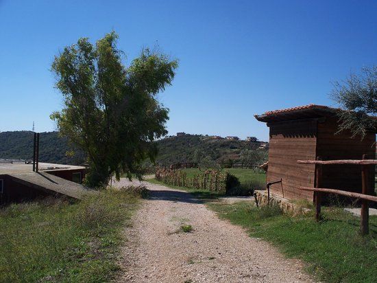 Tenuta dell'Argento Resort: hills