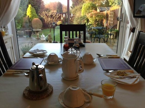 Sue Simmons Bed & Breakfast: my view from the breakfast room