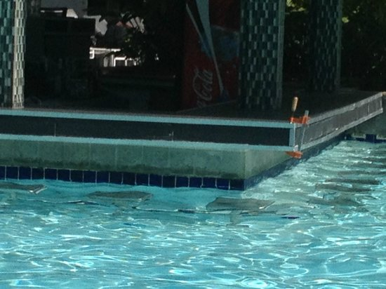 The Condado Plaza Hilton: Clamps holding the pool bar together