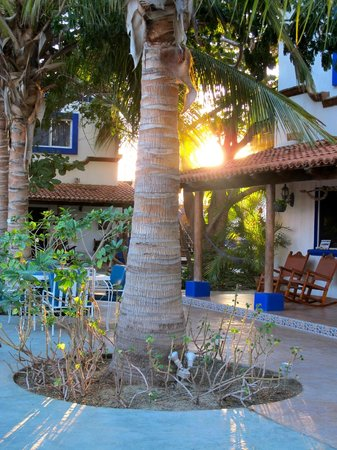 Hacienda Paraiso de La Paz Bed and Breakfast/Inn: Sunset in the courtyard