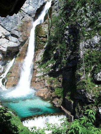 آبارتمينتس هاوس جاجير: Awesome hike to nearby spectacular waterfalls. Don't miss. 