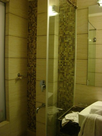 Clarks Inn, Gurgaon, Delhi-NCR: Salle de bains de la chambre
