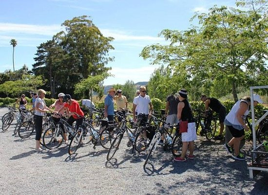Takaro Trails Cycle Tours - Day Tours: Getting set up