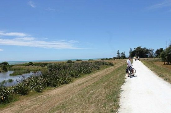 Takaro Trails Cycle Tours - Day Tours: Fabulous tracks and views