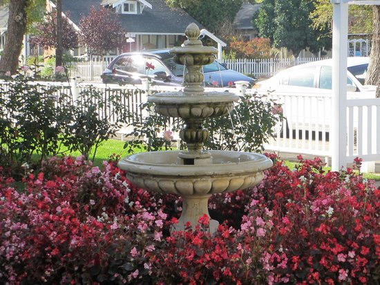 Arbor Guest House: fountain