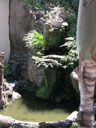 Puri Sading Hotel : Water Feature