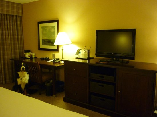 Sheraton Centre Toronto Hotel: 家具
