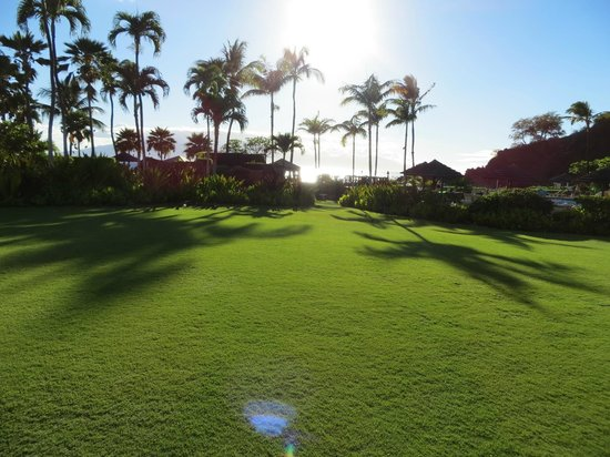 Sheraton Maui Resort & Spa: One of the many lawns