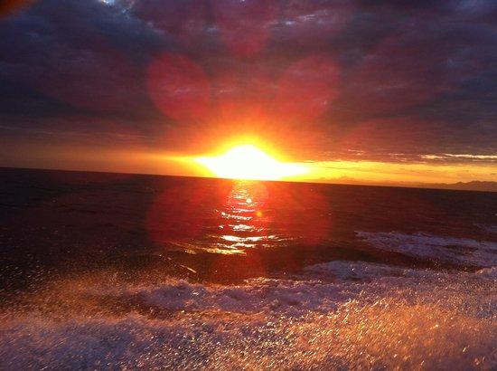 Thatch Caye Resort: Thatch Caye Sunset