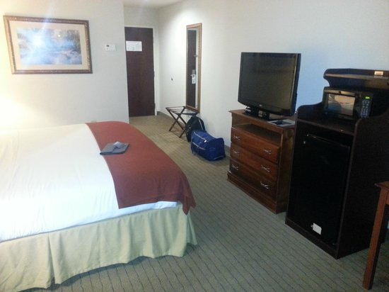 Holiday Inn Express Hotel & Suites Dyersburg: My Room