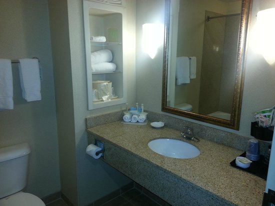 Holiday Inn Express Hotel & Suites Dyersburg: Bathroom