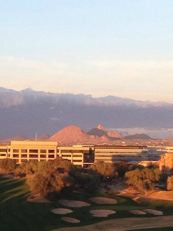 The Westin Kierland Resort & Spa: grounds