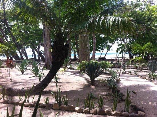 Villas Hermosas: view from honeymoon villa