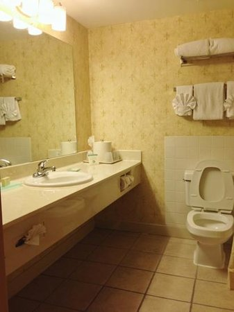 The Chateau Hotel and Conference Center: Bathroom