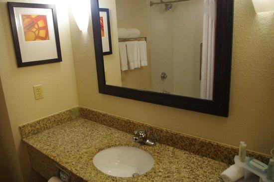 هوليداي إن إكسبرس هوتل آند سويتس توبيلو: Bathroom