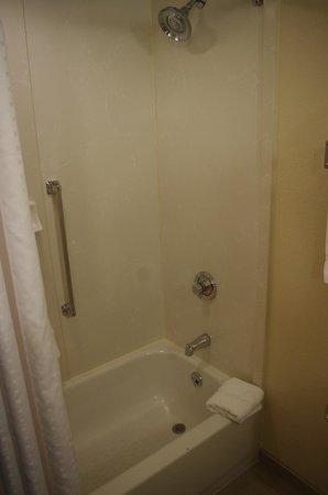 هوليداي إن إكسبرس هوتل آند سويتس توبيلو: Shower