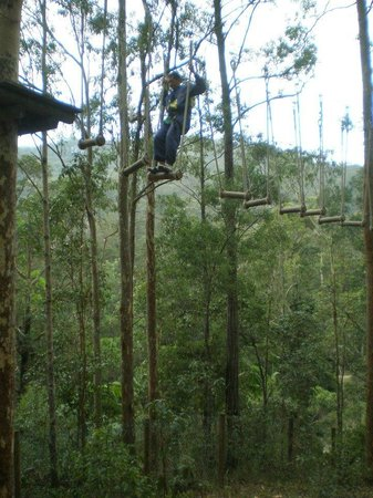 Mount Tamborine Adventure Parc: Probably the hardest part of the course
