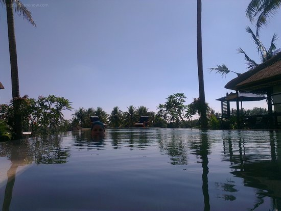 Lodtunduh Sari: View from the pool