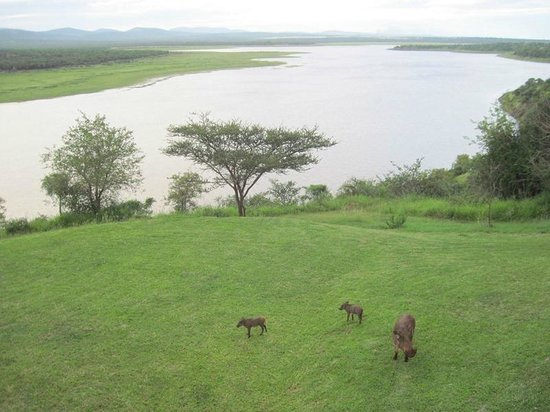 Nkwazi Lake Lodge: From dining room