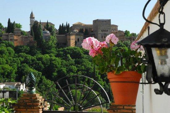 Apartamentos Montesclaros: Vistas a la Alhambra