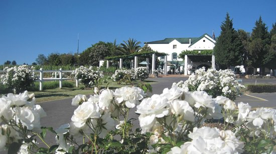 ‪The Avontuur Estate Restaurant‬