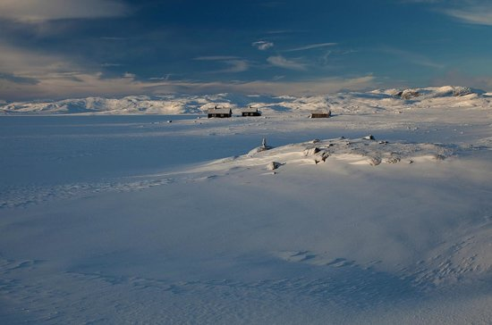 Hardangervidda National Park: Hardangervidda at winter time