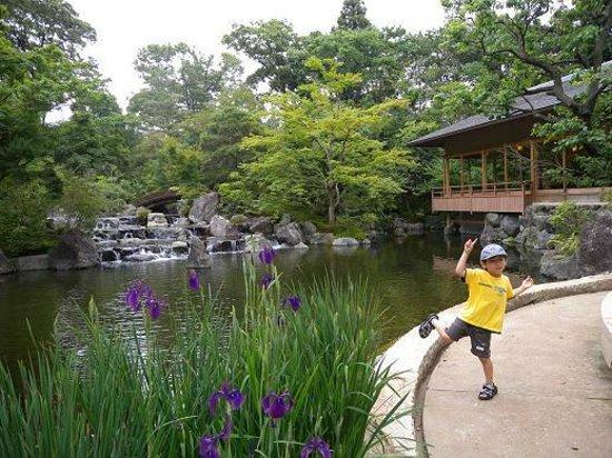Samukawa Shrine : 境内裏のお庭です。参拝したのでチケットを頂けました。