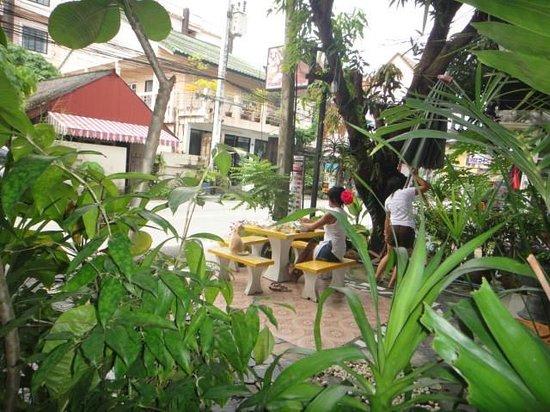 Chez Sabina Guesthouse: Les voisines