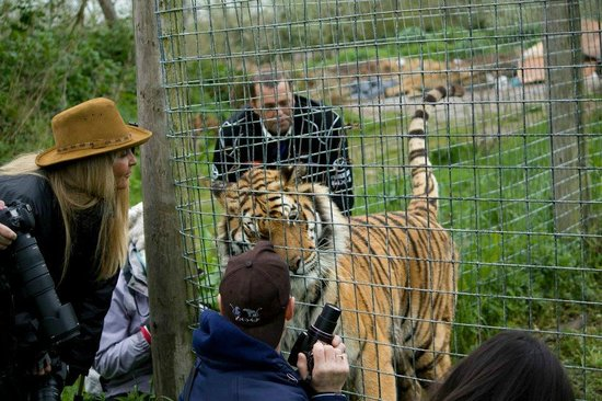 Isle of Wight Zoo : Rajiv being a friendly cutie!
