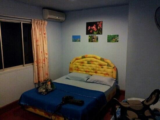 Sukau Greenview Bed & Breakfast: Zimmer im Haupthaus (incl. Mäusedreck)