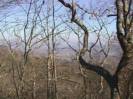 Pinnacle Mountain Trail