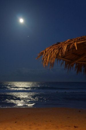 巴比博恩海灘餐廳飯店照片