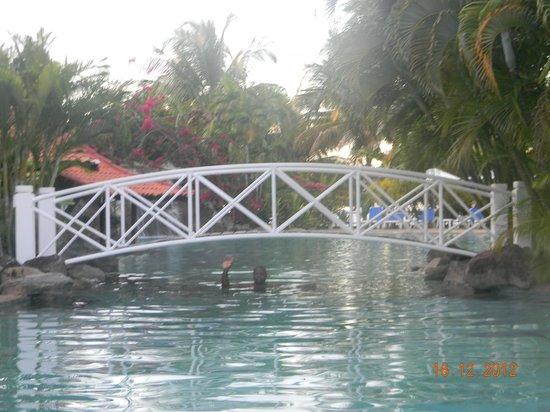 Radisson Grenada Beach Resort: A bridge across the Oasis swimming pool