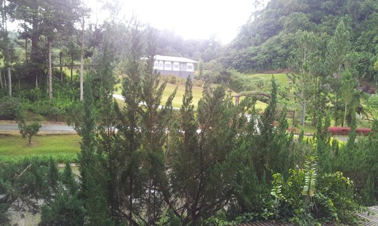 Borneo Highlands Resort: View from room
