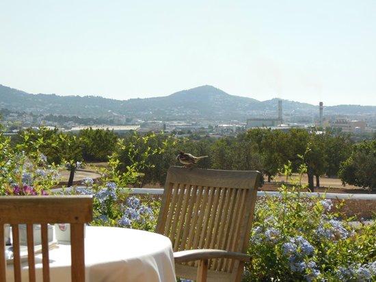 Hotel Rural Es Trull de Can Palau: レストランからの眺望