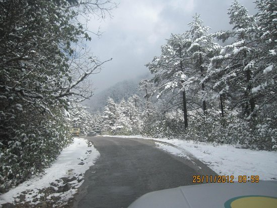 Lachung, India: Yumtang Valley to Zero Point Road
