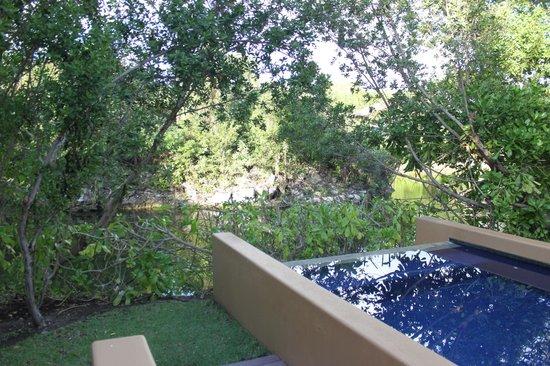 Banyan Tree Mayakoba: Pool area in courtyard villa