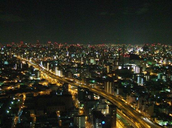 Hotel Osaka Baytower: 44階シングル
