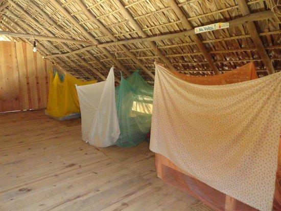 Hostal La Isla: Beds upstairs