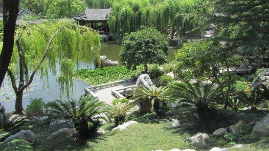 Chinese Garden Sydney - Picture of Chinese Garden of Friendship ...