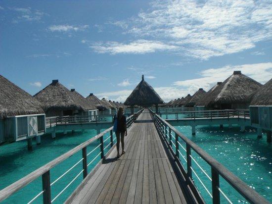 The St. Regis Bora Bora Resort: Boardwalk to the villas