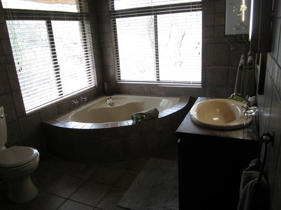 Gomo Gomo Game Lodge: Bath with view to the bushes