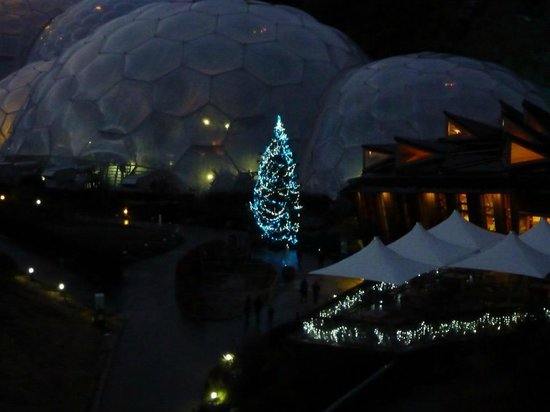 Eden Project Christmas Tree Near The Core