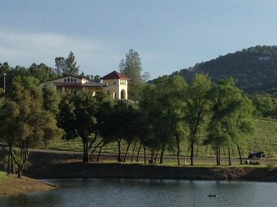 Placerville, Californië: Viticulture Galleria and pond