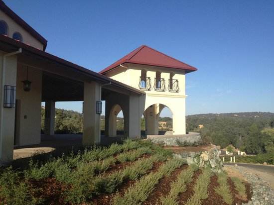 Placerville, Californië: Viticulture Galleria Tower