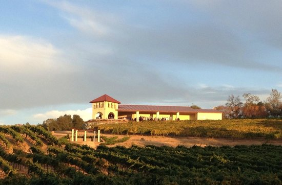 David Girard Vineyard: Viticulture Galleria