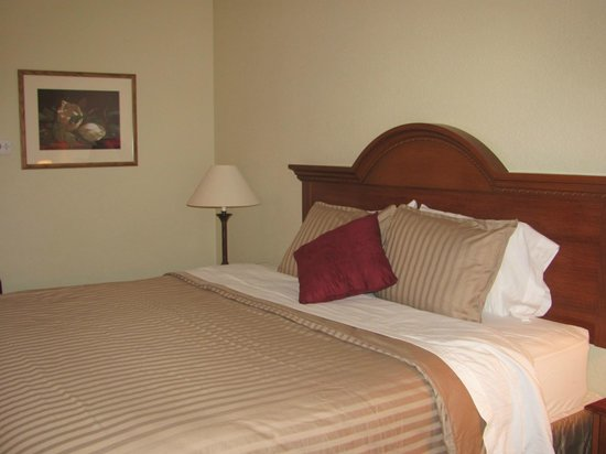 Dollinger's Inn & Suites: Standard King Room