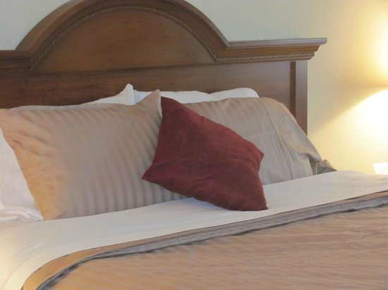 Dollinger's Inn & Suites: Standard Room