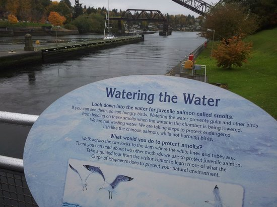 Hiram M. Chittenden Locks: info board 1