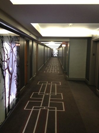 Grand Hyatt New York: Hallway from elevator